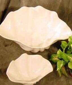 Shell_Bowl_Set