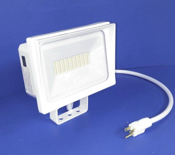 White Flood Light